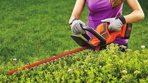 Best Hedge Trimmer for Thick Branches