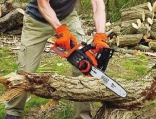 ? Best Chainsaw under 200 Dollars: Buyer's Guide
