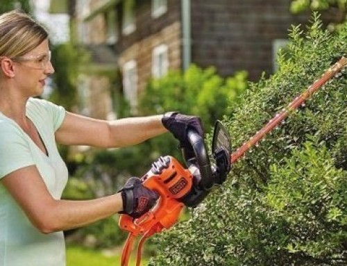 ? Best Hedge Trimmer under $100: Buyer's Guide