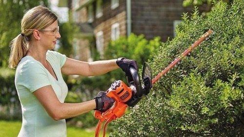 Best Hedge Trimmer under 100