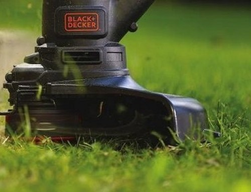 ? 2-Cycle vs 4-Cycle Weed Eater: Buyer's Guide