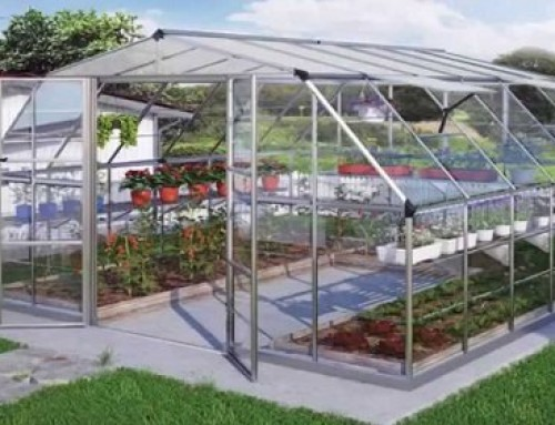 Type of Greenhouses: Info Guide